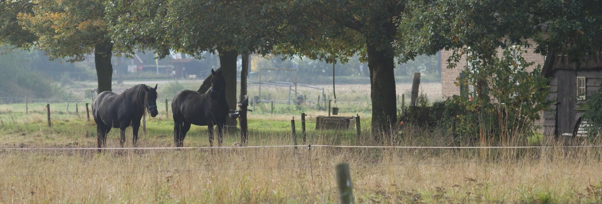Dorpenoverleg Midden Drenthe