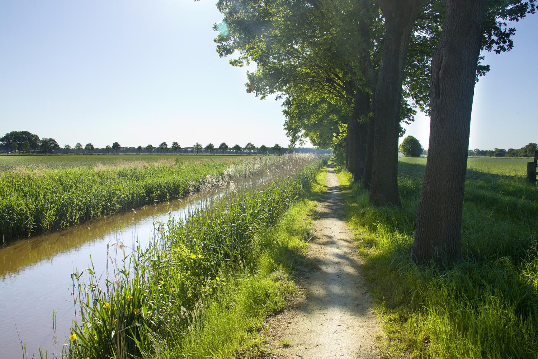 Wandelknooppuntennetwerk Midden-Drenthe